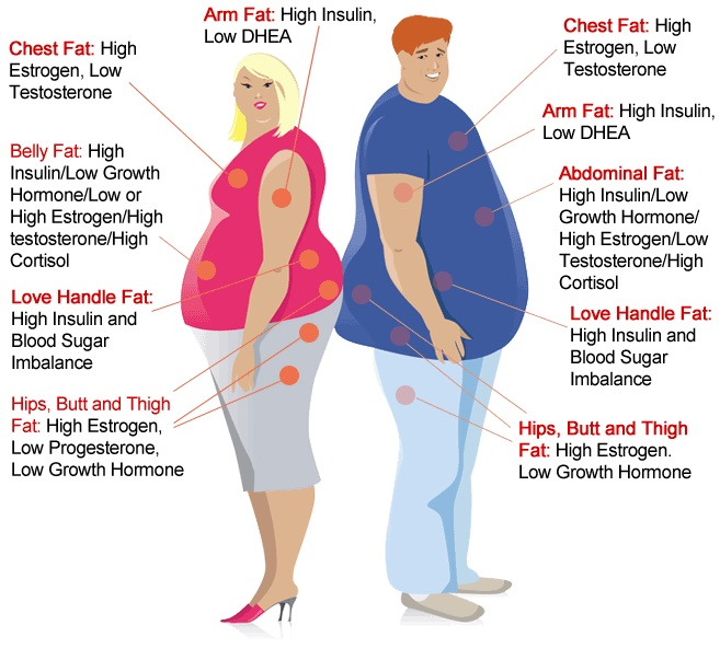 hormones weight